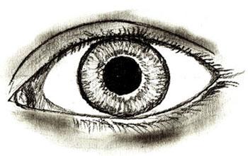 Как нарисовать глаза человека, шаг 6