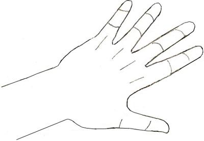 Как нарисовать руку, шаг 4