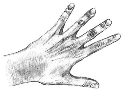 Как нарисовать руку, шаг 6