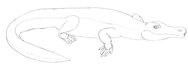 Как нарисовать крокодила как научиться рисовать карандашом Как рисовать как рисовать животных