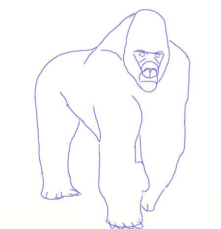 Как нарисовать обезьяну, шаг 5